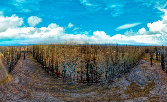 Fotografía aérea Malargue Mendoza Argentina drone